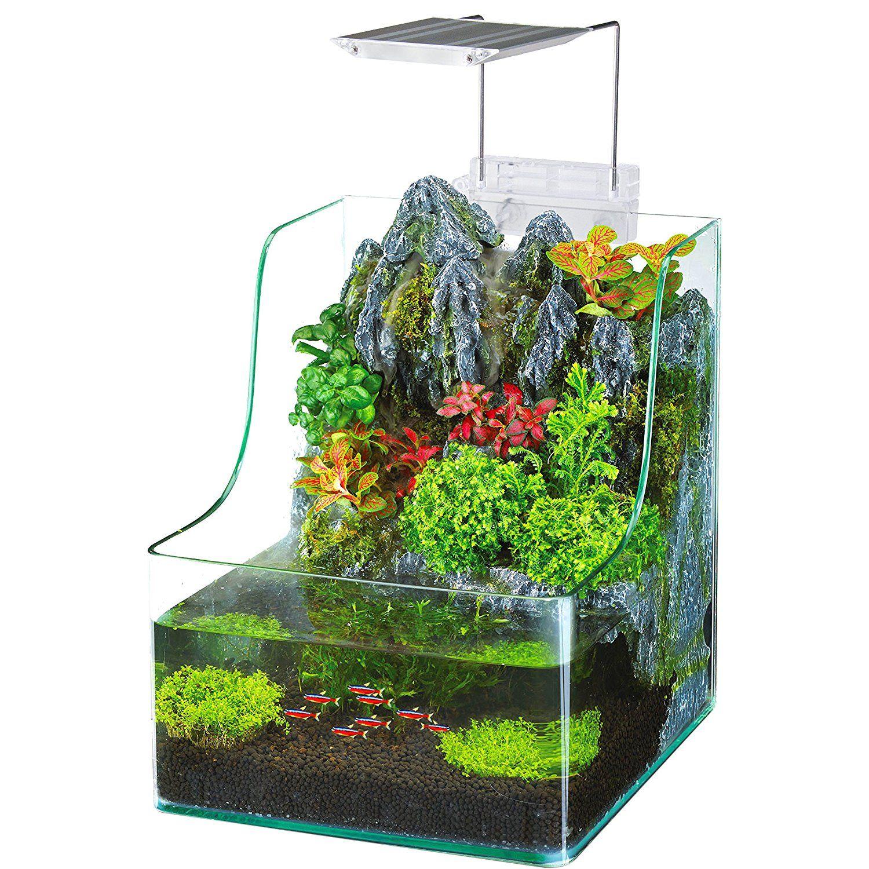 Fish tank supplies - Amazon Com Penn Plax Aqua Terrarium Planting Tank With Aquarium For Fish Waterfall