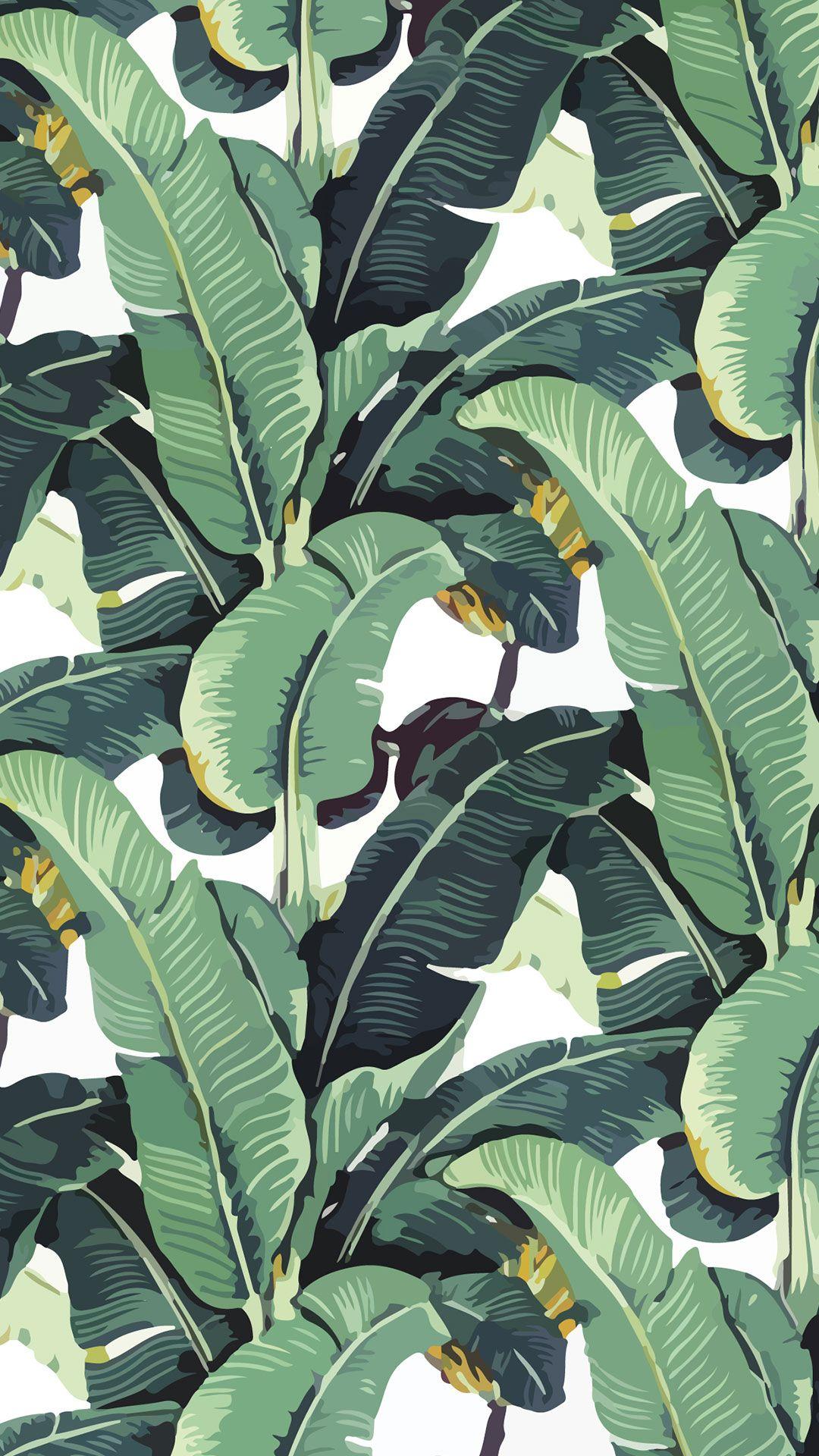Tropical Wallpaper Leaf Wallpaper Bedroom Wallpaper Leaf Banana Leaf Wallpaper