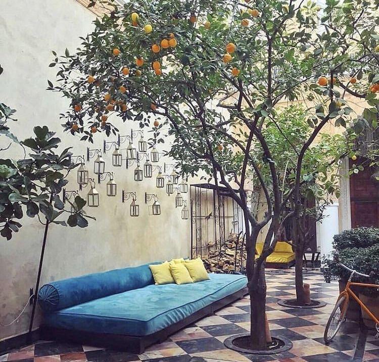Epingle Par Mar Salva Sur Hotel Boutique Mexico Jardin Marocain Salles De Sejour En Plein Air Terrasse Jardin