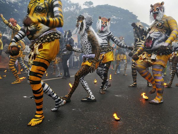 Best Travel Pictures of 2011 Named | Movement | Travel ...