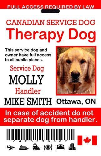 Canadian Therapy Dog Id Tag Service Dog Card Ada Emotional