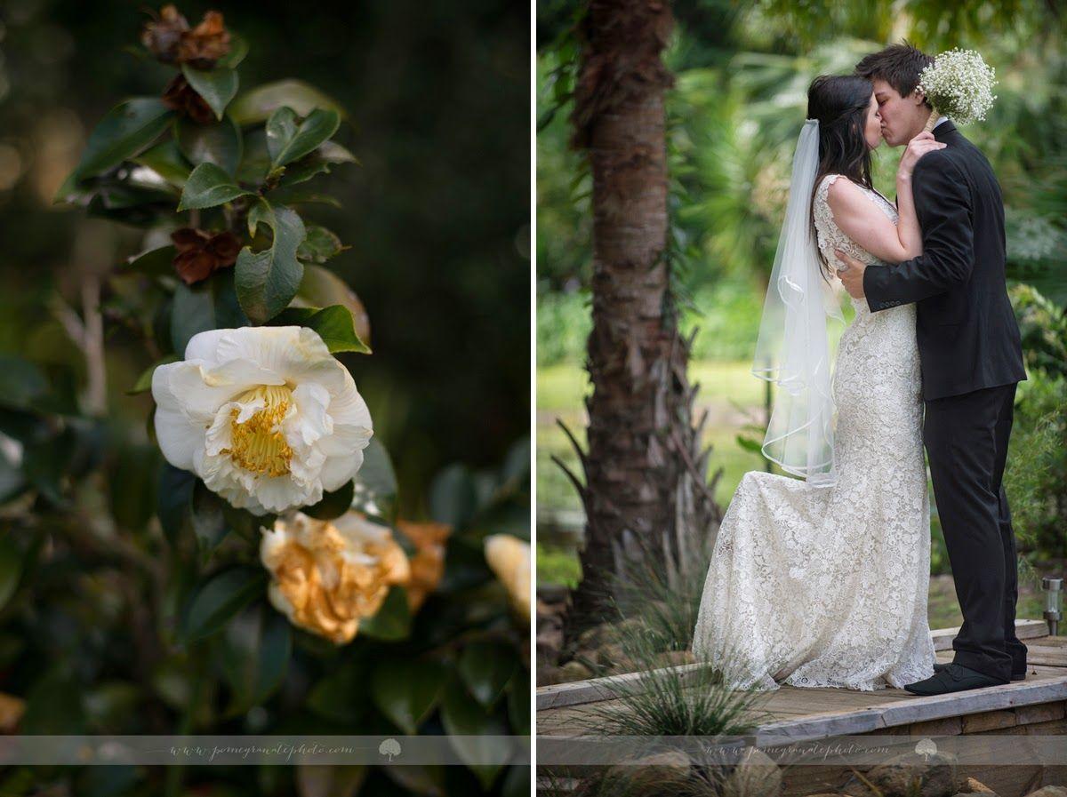 Georgina and Sam's pretty garden wedding ..... Buderim wedding photographer