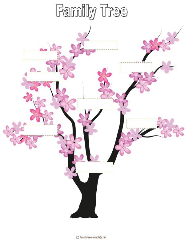 blank family tree for kids genealogy family history pinterest