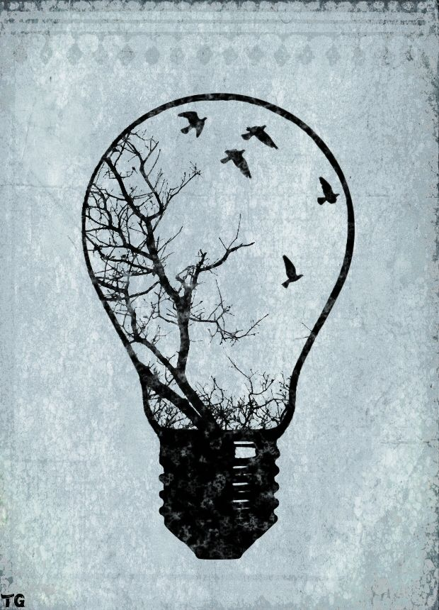 Light Bulb Birds Tiffany Graham Drawings Art Drawings Artwork