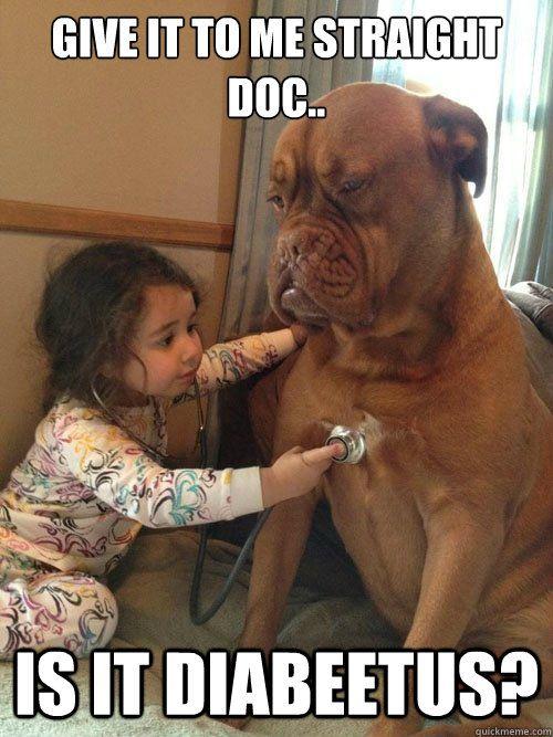 e71d88ce5a895a1fcdbdd95713ef8a40 related image cute pinterest sick dog, dog memes and dog,Cute Sick Memes