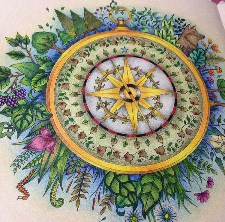 Forest Pictures Johanna Basford Coloring Books Colouring Pencils Prismacolor Enchanted Compass Colored Motifs