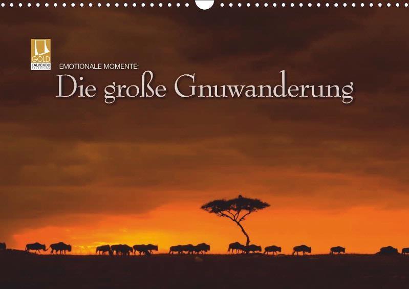 Emotionale Momente: Die große Gnuwanderung - CALVENDO Kalender von Ingo Gerlach -  #calvendo #calvendogold #kalender #fotografie #gnu #afrika #natur #tierfotografie