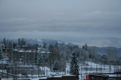 Winter Wonderland, Abbotsford, BC