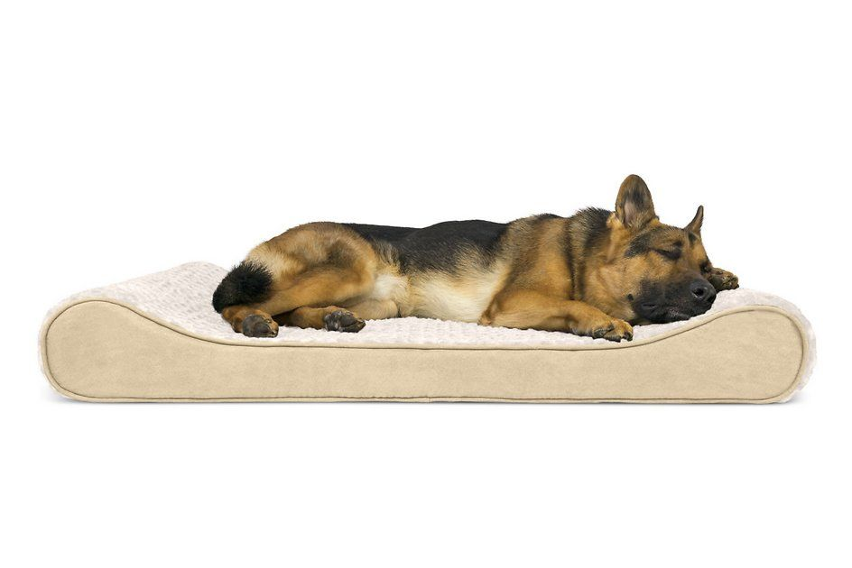 Furhaven Ultra Plush Luxe Lounger Orthopedic Cat Dog Bed W Removable Cover Cream Giant Chewy Com Orthopedic Dog Bed Dog Pet Beds Pet Dogs