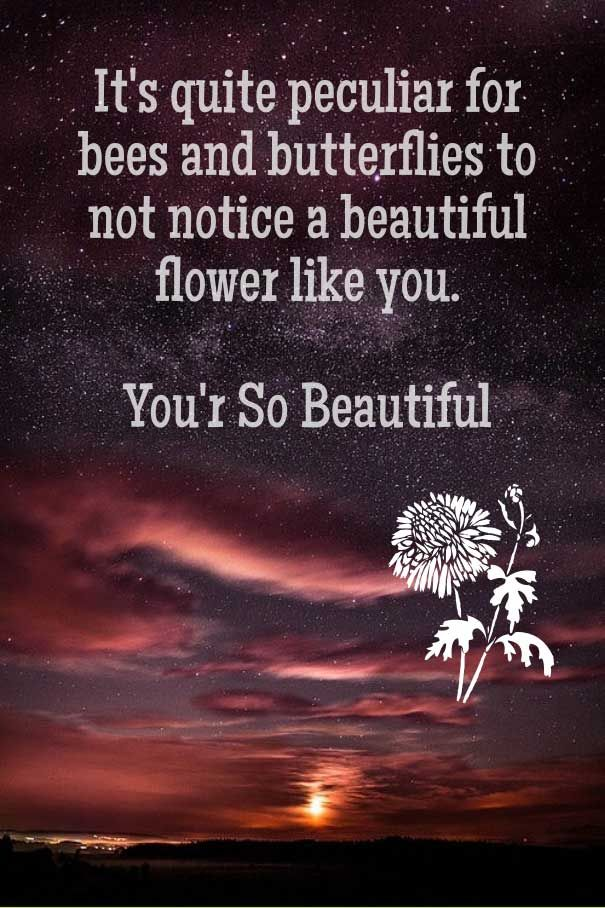 You Are Most Beautiful Girl Quotes You Are So Beautiful Quotes