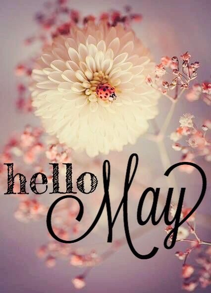 Hello May | four seasons | Pinterest | Spring, Blessings ...