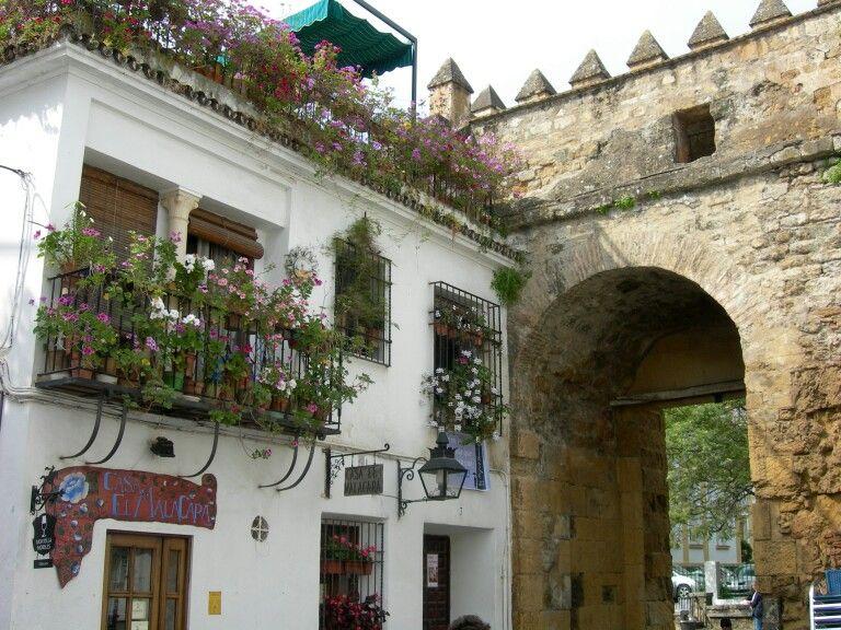 Puerta Al Interior Del Barrio Judio. Balcones Y Ventanas Llenos De Aroma Y  Color. Patio EspañolEl ...