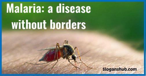 Malaria: a disease without borders - Malaria Slogans