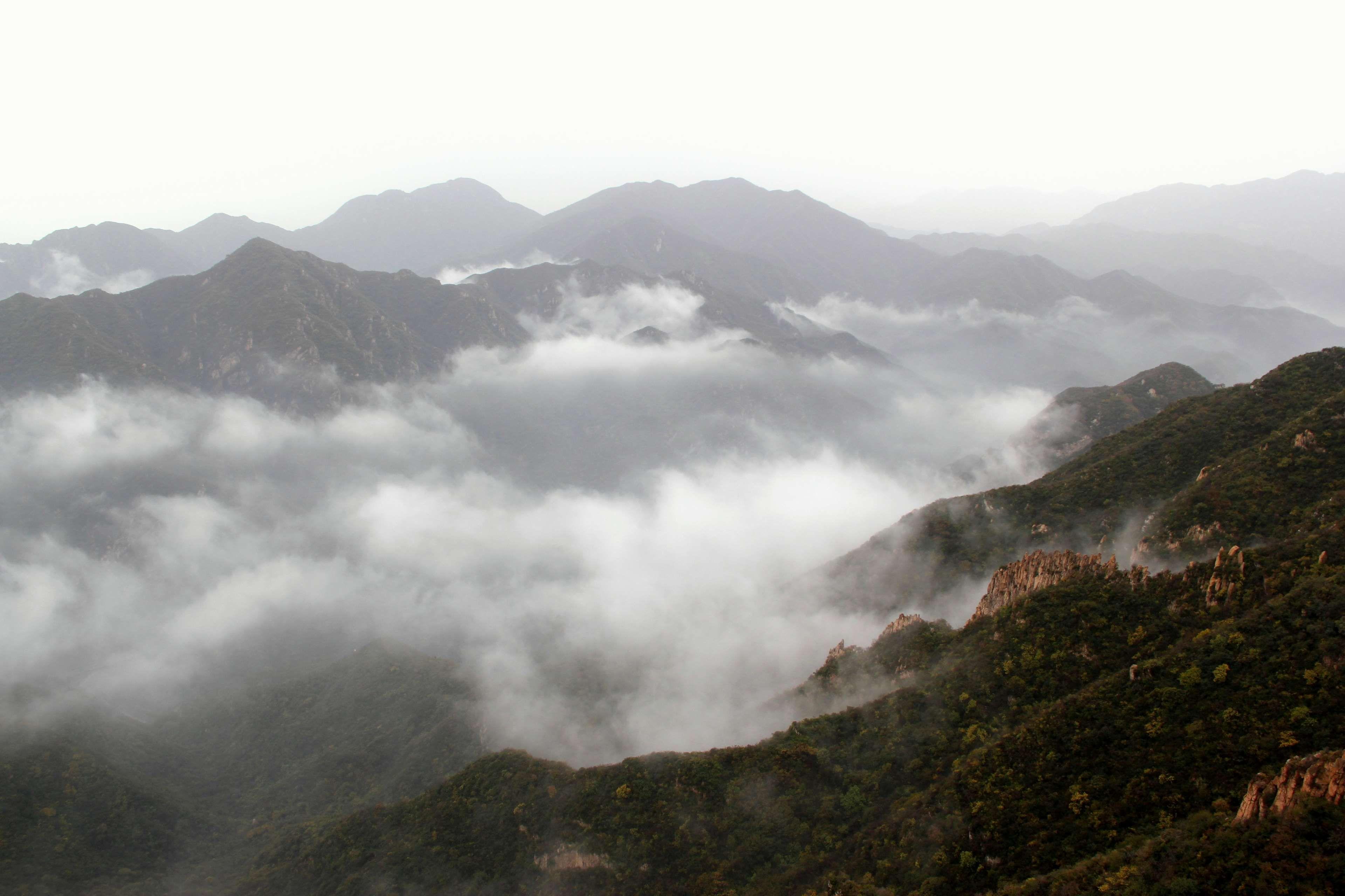 clouds, foggy, forest, landscape, mist, misty, mountains