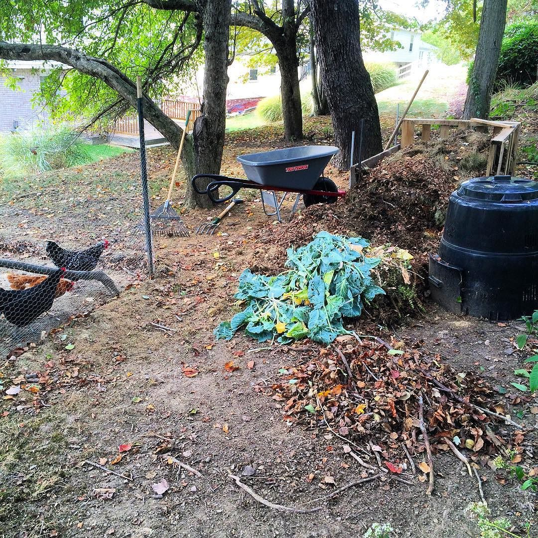 The sprout greens are about to get mixed into next years compost! Also it's time for a late season withdrawal to replenish the vegetable beds.  #compost #organicgardening