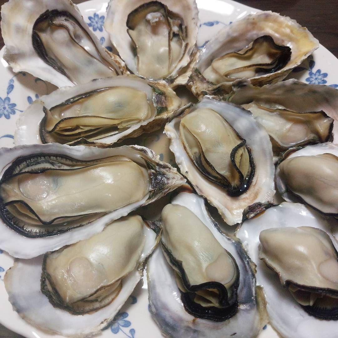 豊前一粒牡蠣 かき直売 キロ700円 小 門司区恒見町 入江水産 チンしただけ W 明けましておめでとうございます今年も宜しくお願い致します By Tanmen1223 明けましておめでとうございます おめでとう