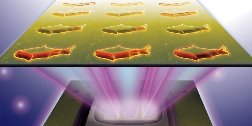 Wetenschappers hebben microscopisch kleine visjes ontwikkeld die in de toekomst wellicht in het menselijk lichaam rond gaan zwemmen.