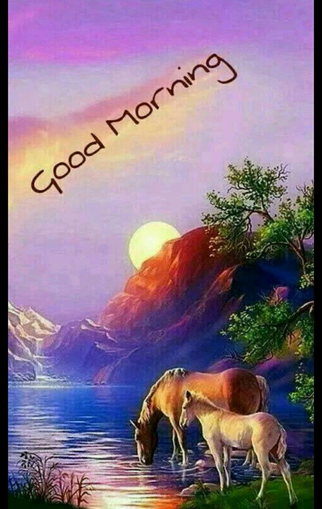 Pin by gopesh avasthi on morning pinterest morning greetings waking up is always a good morning m4hsunfo