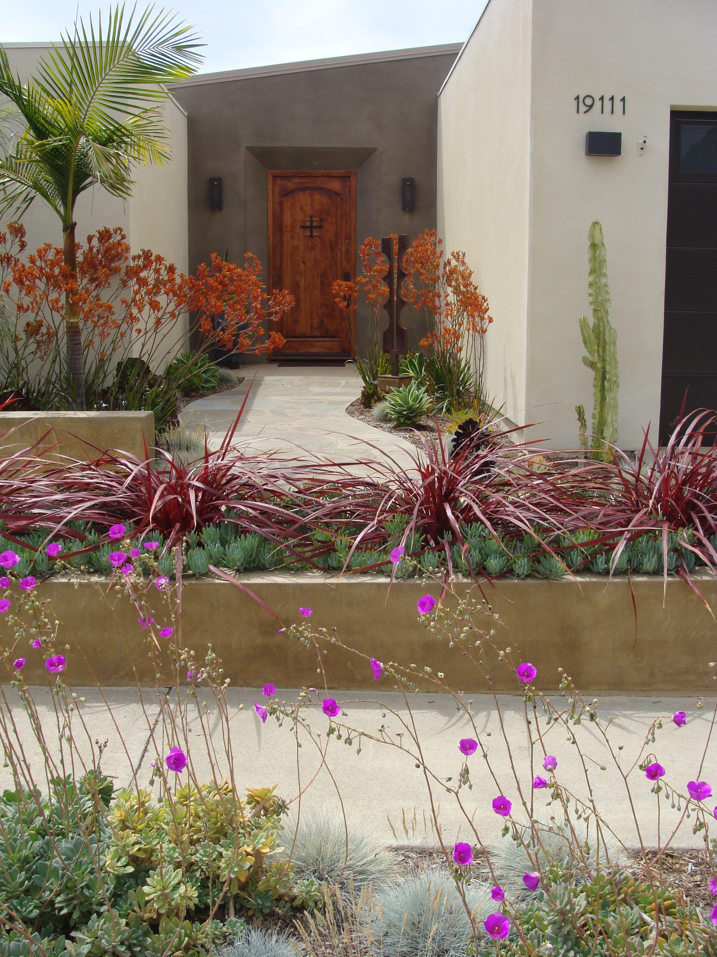 CA Friendly Design Ideas | drought tolerant | Pinterest | Gardens ...