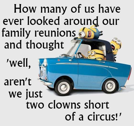 Funny Minion Quotes Of The Week Minion Pinterest Engraçado