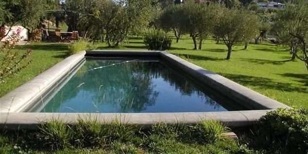 bassin aixois piscine - Recherche Google home pool Pinterest - terrasse bois avec bassin