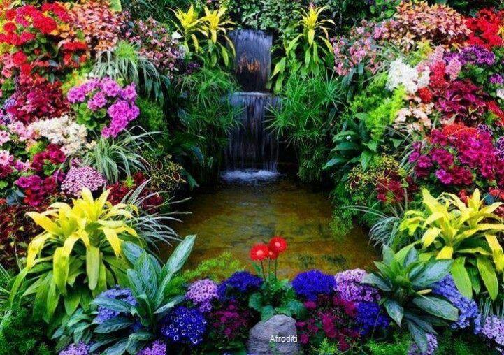 So many colors PAISAJES   CASCADAS  FLORES Pinterest Cascadas - cascadas en jardines