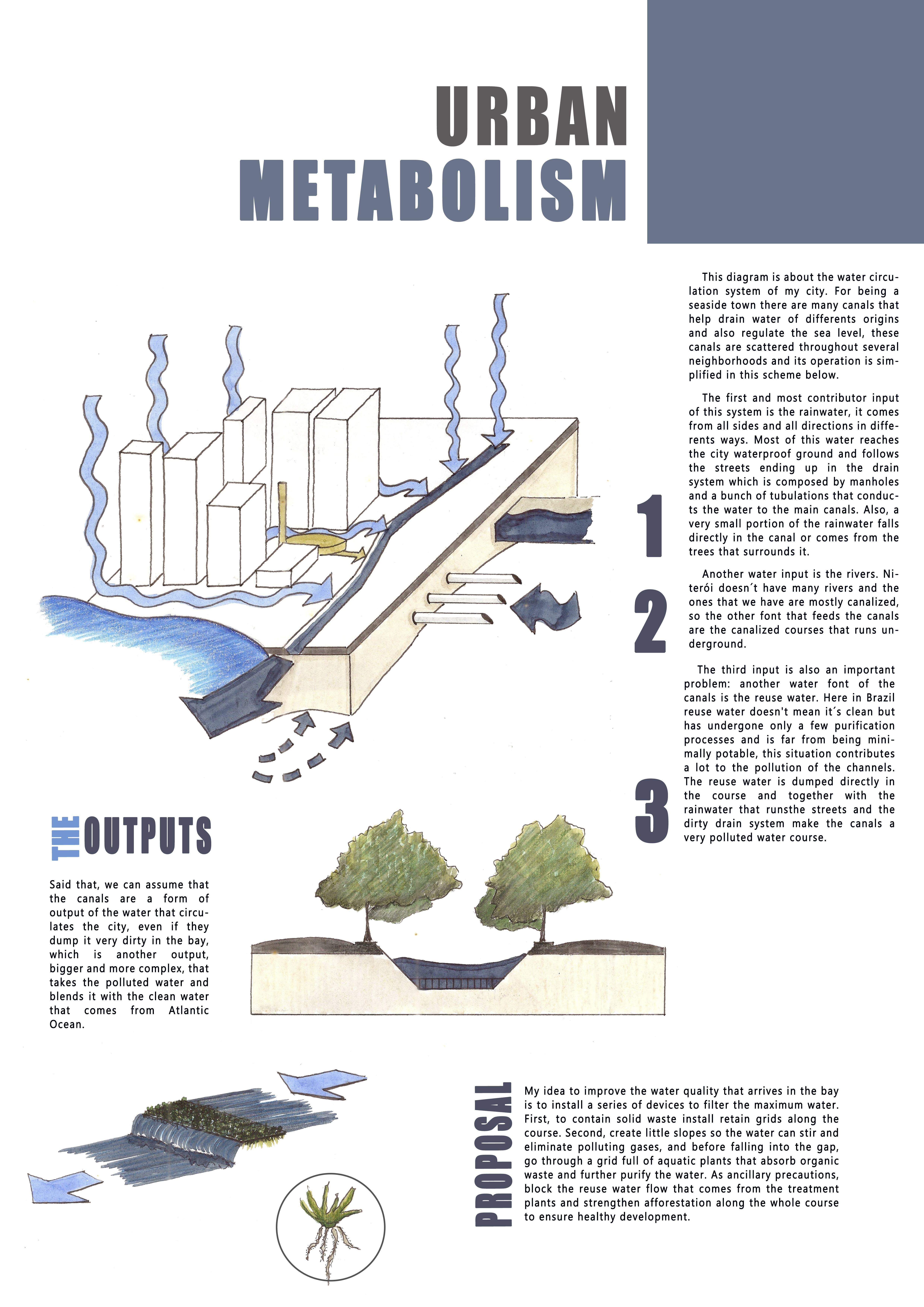 El estrés y metabolismo hidrocarbonado bajo