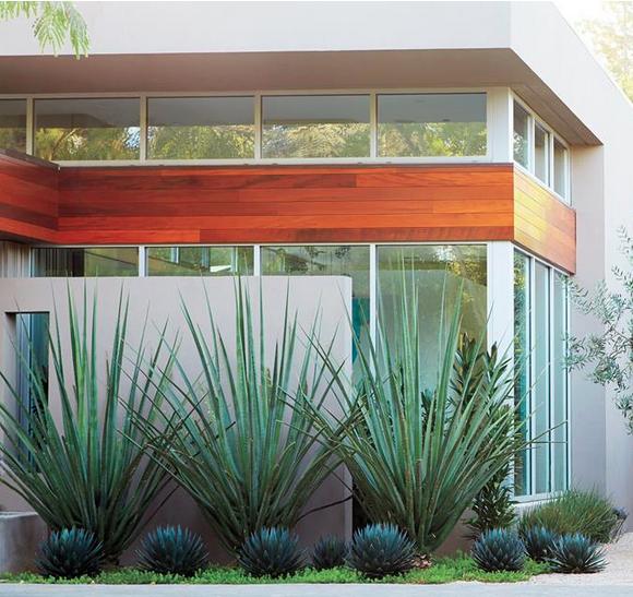 Lawn Begone 7 Ideas For Front Garden Landscapes: Secrets To The Easiest Garden Landscape