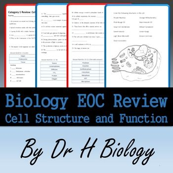 Biology EOC Review Cell Structure And Function Secondary