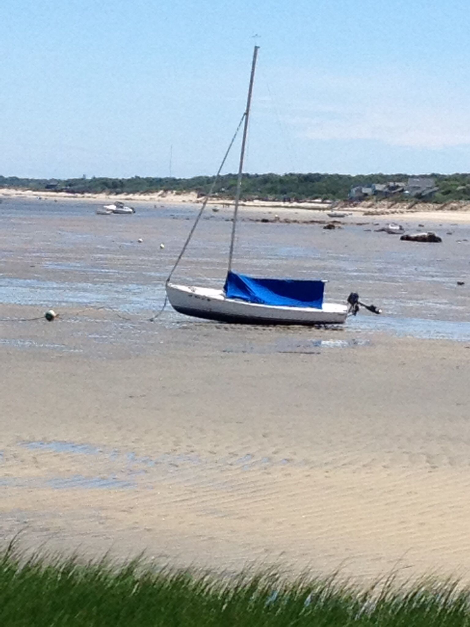Low tide on cape cod
