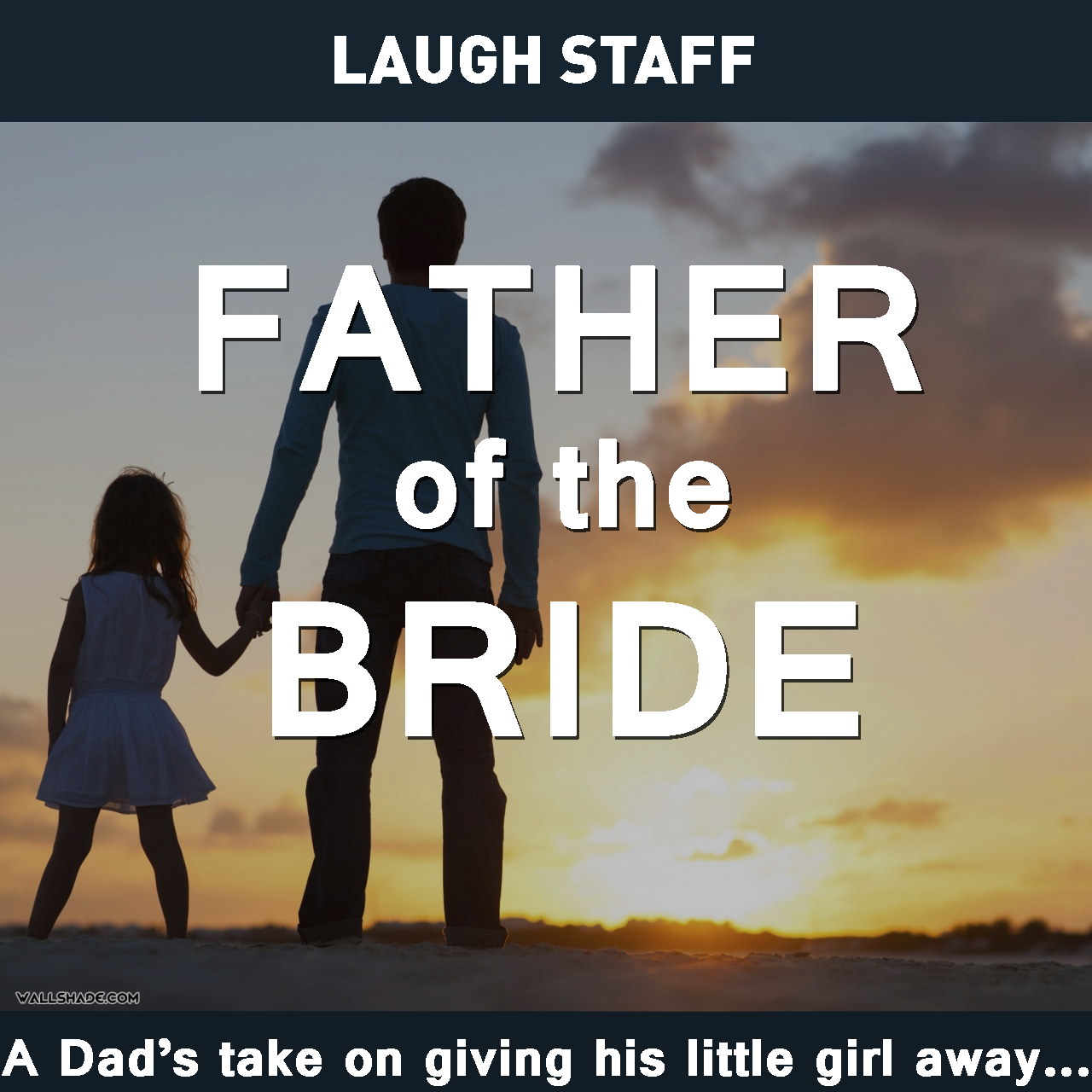 Father Of The Bride Speeches Written By Professional