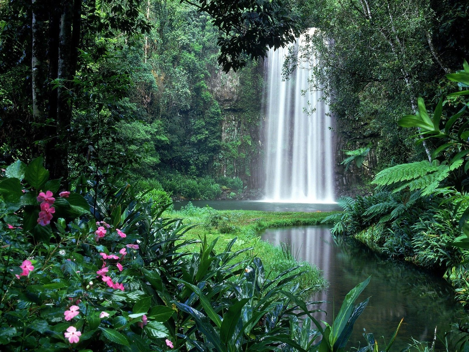 forest flower gardens landscapes garden rivers trees