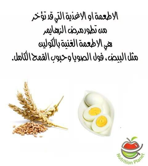 الكولين Health Nutrition Family Health