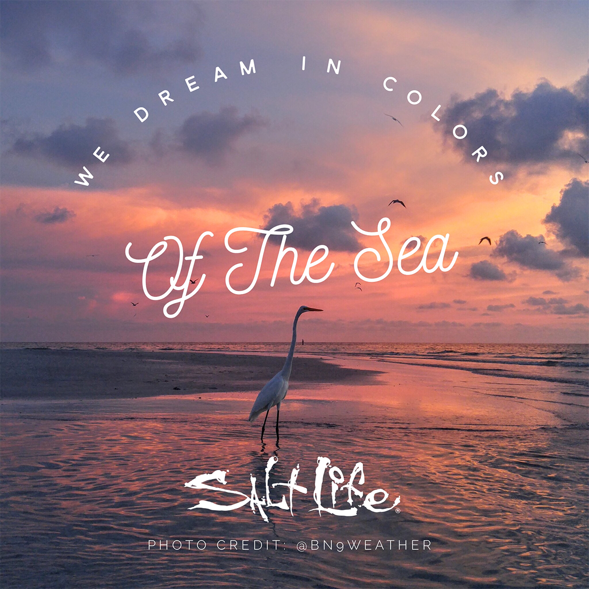 We dream in colors of the sea! Summer quotes, Ocean