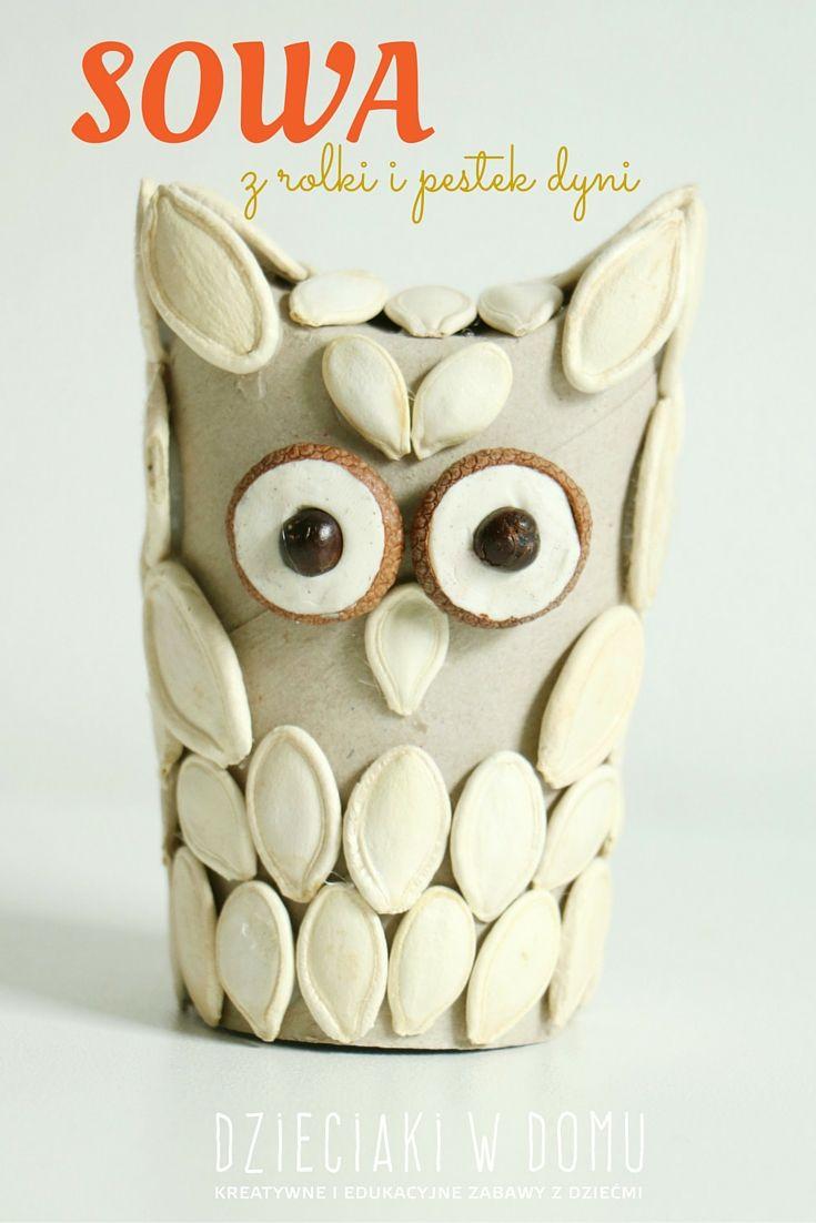 Sowa Z Rolki I Pestek Dyni Dzieciaki W Domu Halloween Toilet Paper Roll Crafts Paper Roll Crafts Owl Crafts