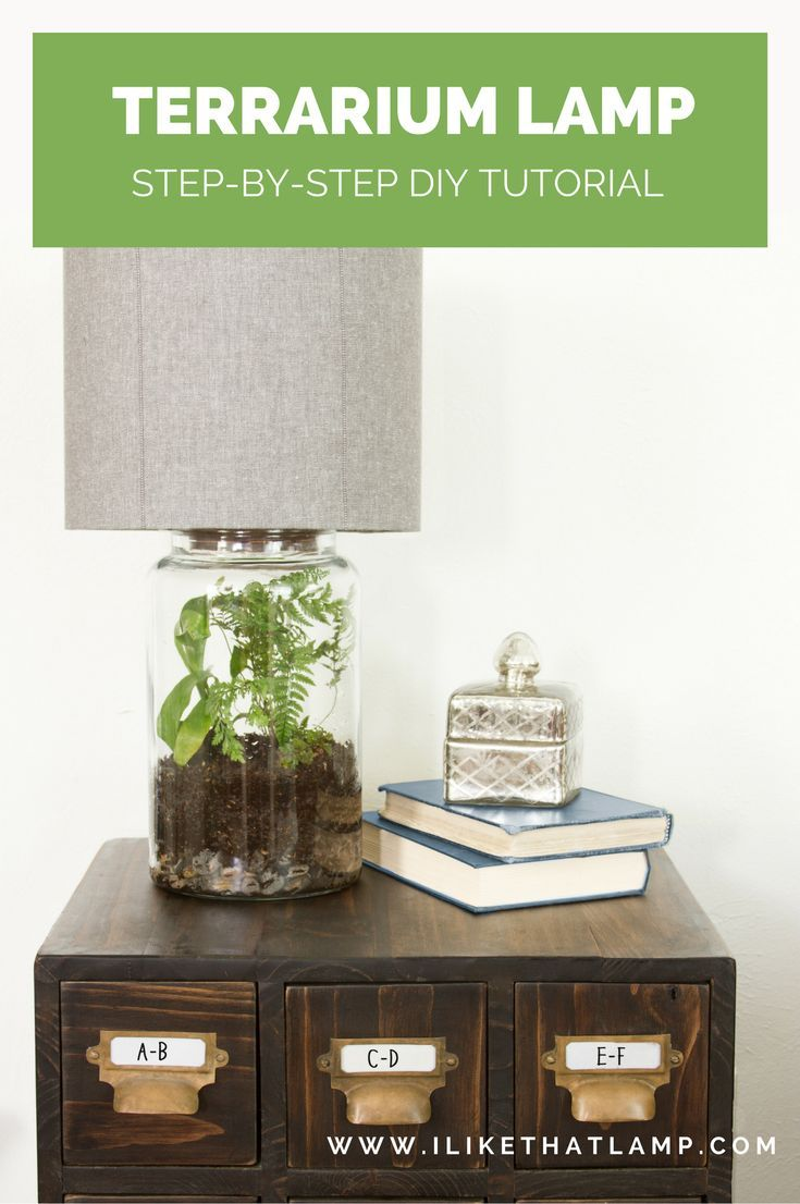 Featured on not just a housewife stacyus easy diy terrarium lamp
