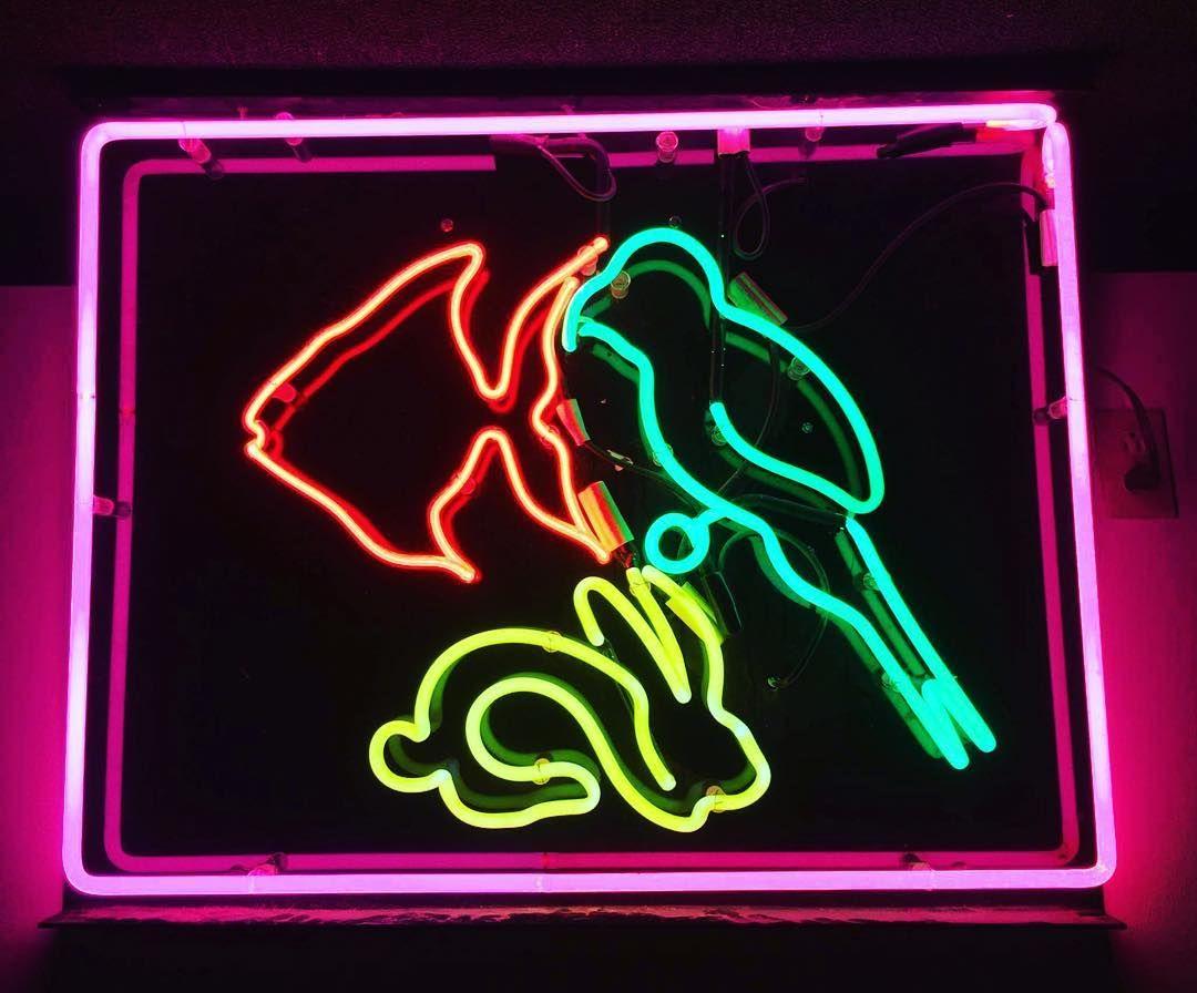 Pet Neon Sign Repair Neonrepair
