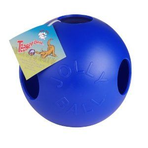 Jolly Ball Boomer Ball Just Like The Ones I Used At The Zoo For