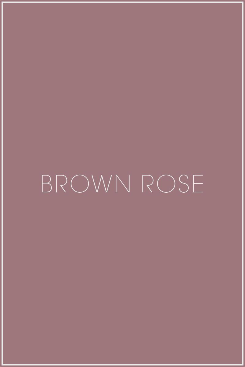 Brown Rose - soft summer - beautiful colour