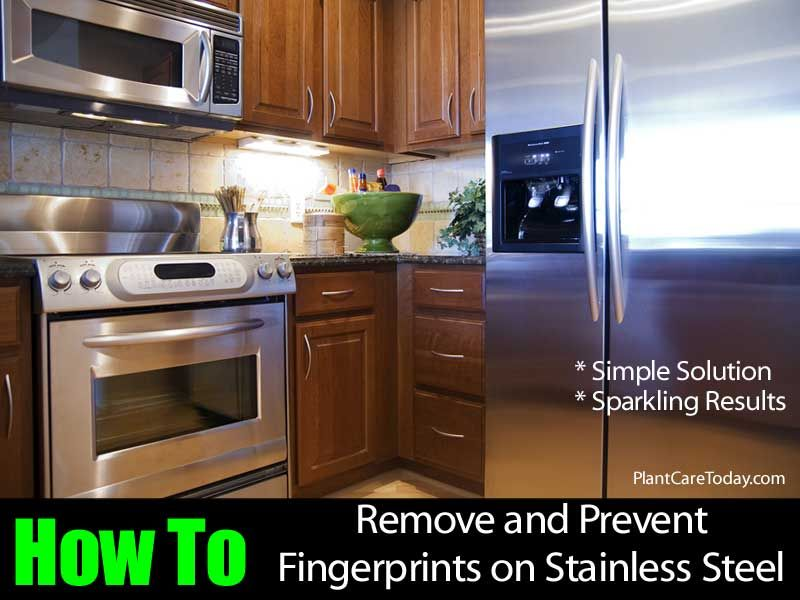 One of the main problems with using stainless steel appliance is the fact that once you touch them, even with clean hands, fingerprints are left. This can be a major annoyance for a lot of people and even a deterrent from purchasing them in the first place. When we purchased ours my wife was very …