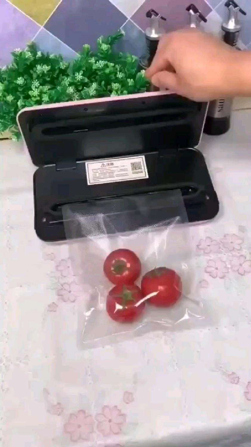 Portable Vacuum Sealer