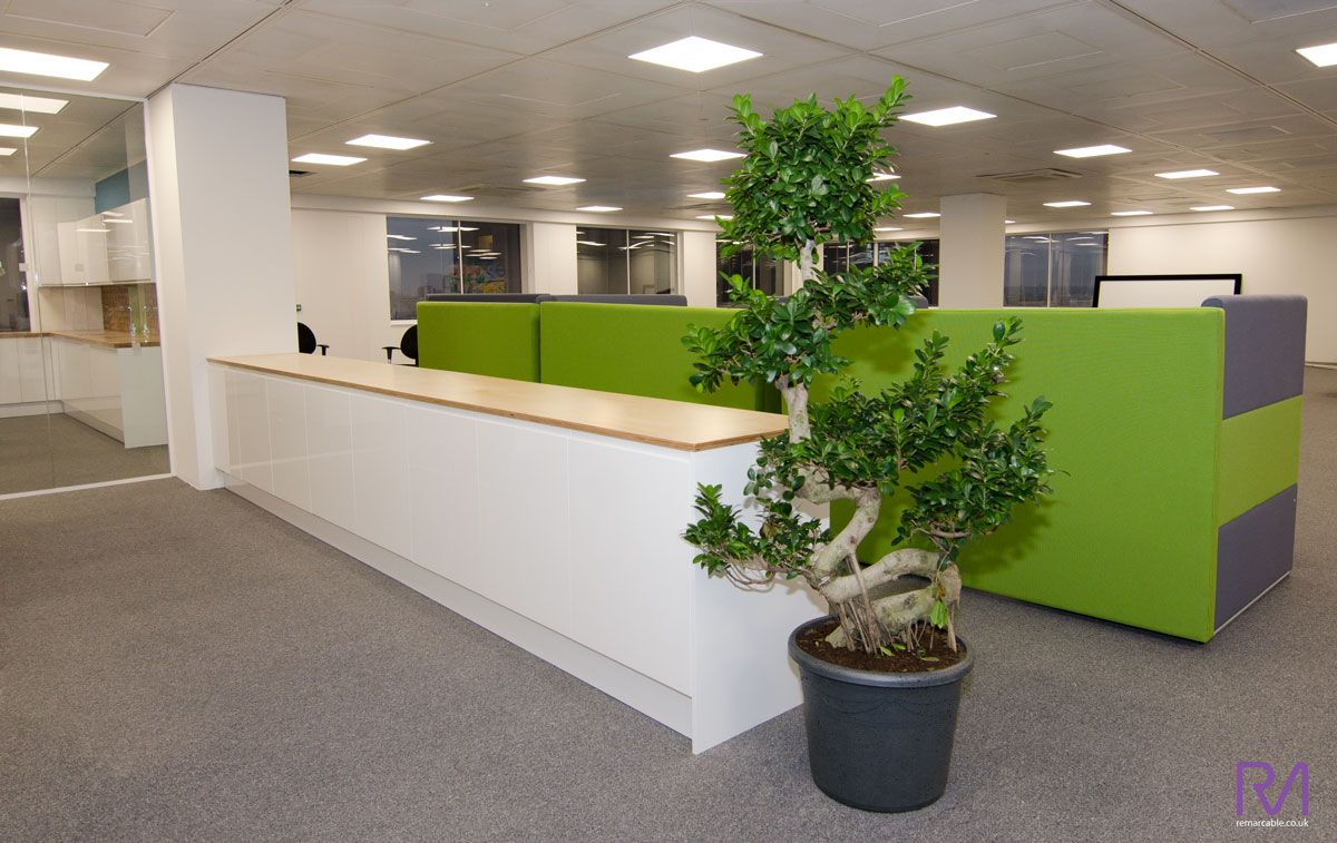 Remarcable Design Budget Friendly Office Refurbishment With  # Muebles Guzman Nature