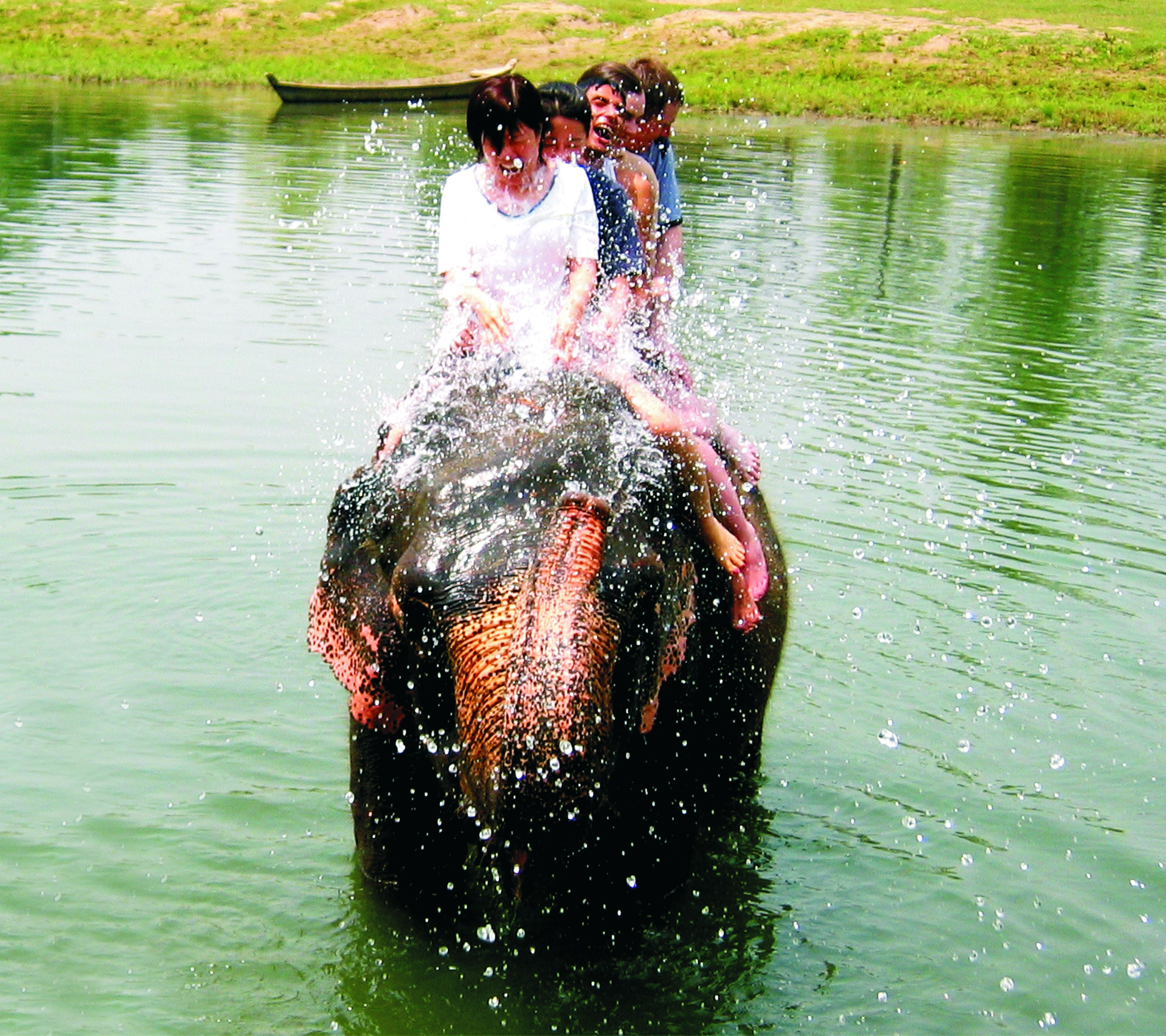 Elephant ride Elephant ride, Western ghats, Family resorts