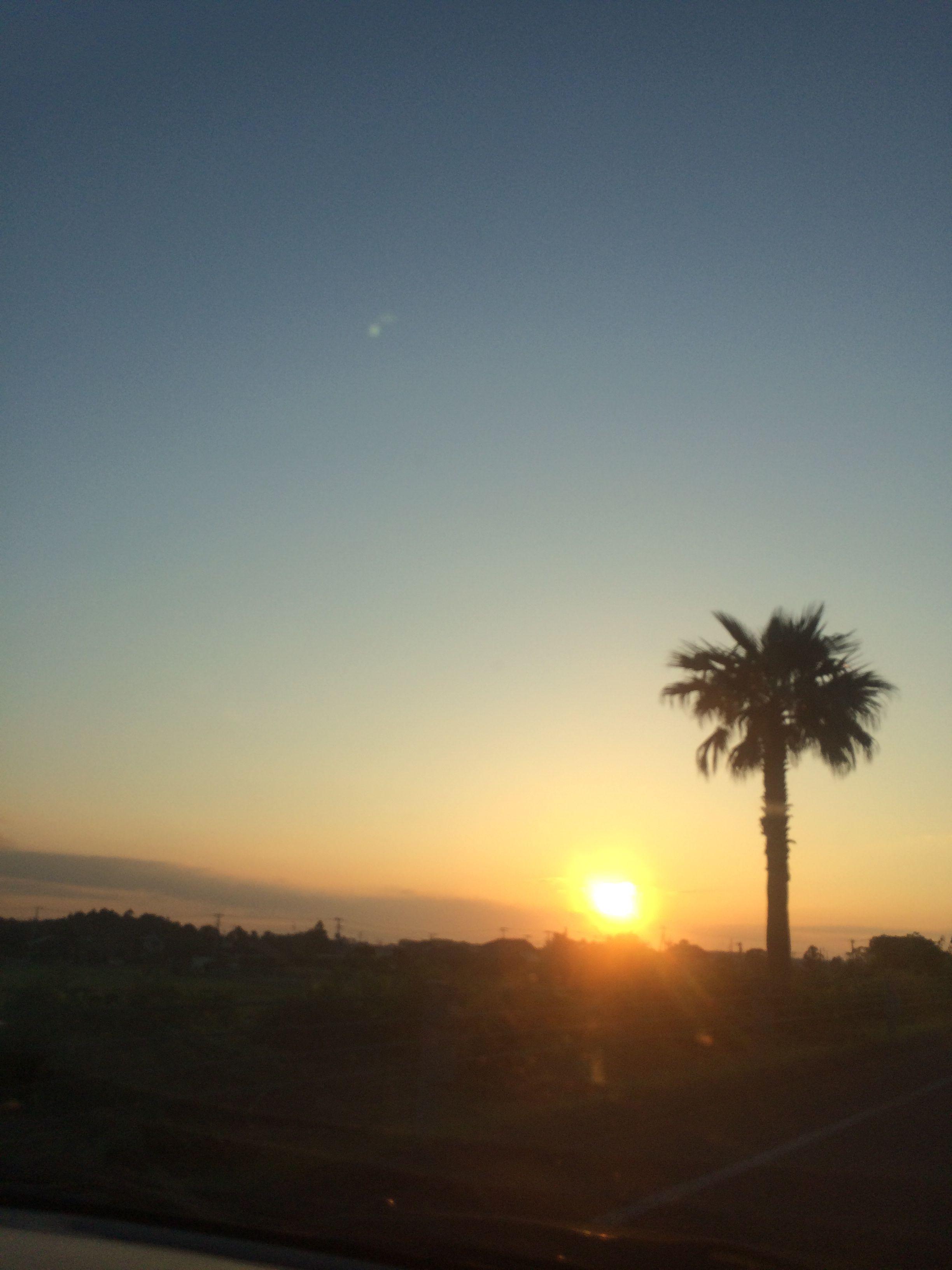 sunrise 2014.06.14 yuuryo