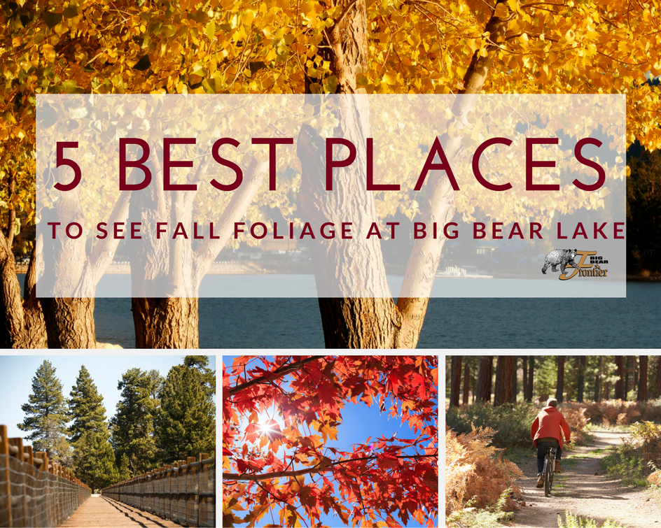 Southern California Is Known As The Best Place To Witness The Seasons In California One Of The Best Places To See Big Bear Lake Big Bear California Bear Lake