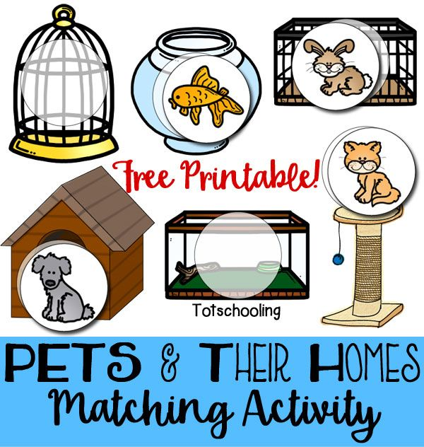 Pets Their Homes Matching Activity Pets Preschool Theme Preschool Pet Activities Preschool Activities