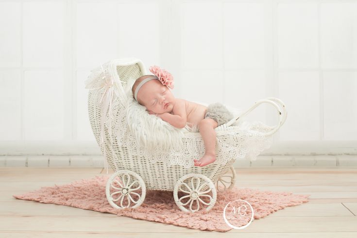 Mudpies n butterflies photography york pa mudpiesnbutterflies photography newborn carriage