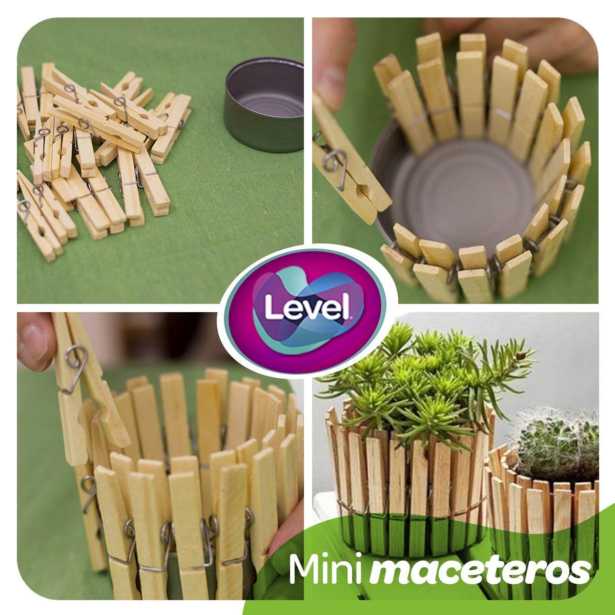 Crea de forma creativa unos mini maceteros. ¡Quedan geniales ...