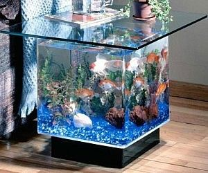 Tavolino Acquario ~ Aquarium end table at http: www.awesomeinventions.com codie