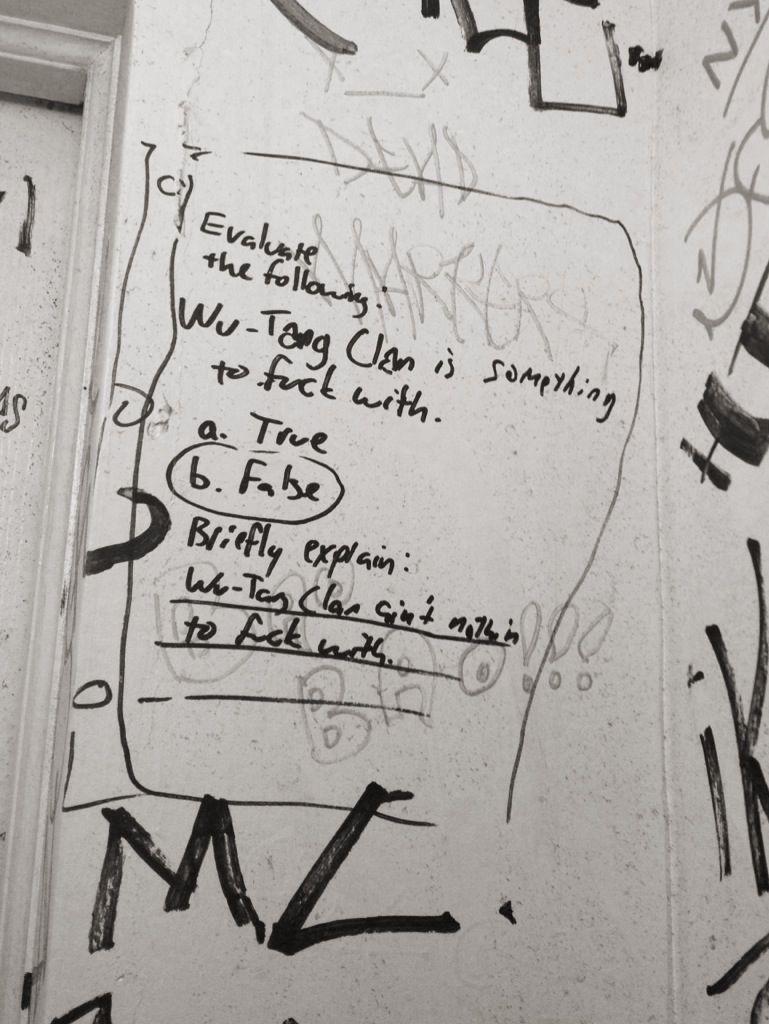 The Pinnacle Of Bathroom Graffiti Art
